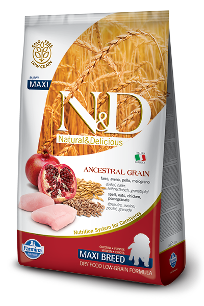 N&D LG DOG Puppy Maxi Chicken & Pomegranate - od 2,5 kg