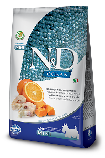 N&D OCEAN DOG GF Adult Mini Codfish & Pumpkin & Orange - od 800g